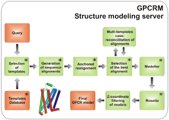 The modeling procedure pipeline in GPCRM image